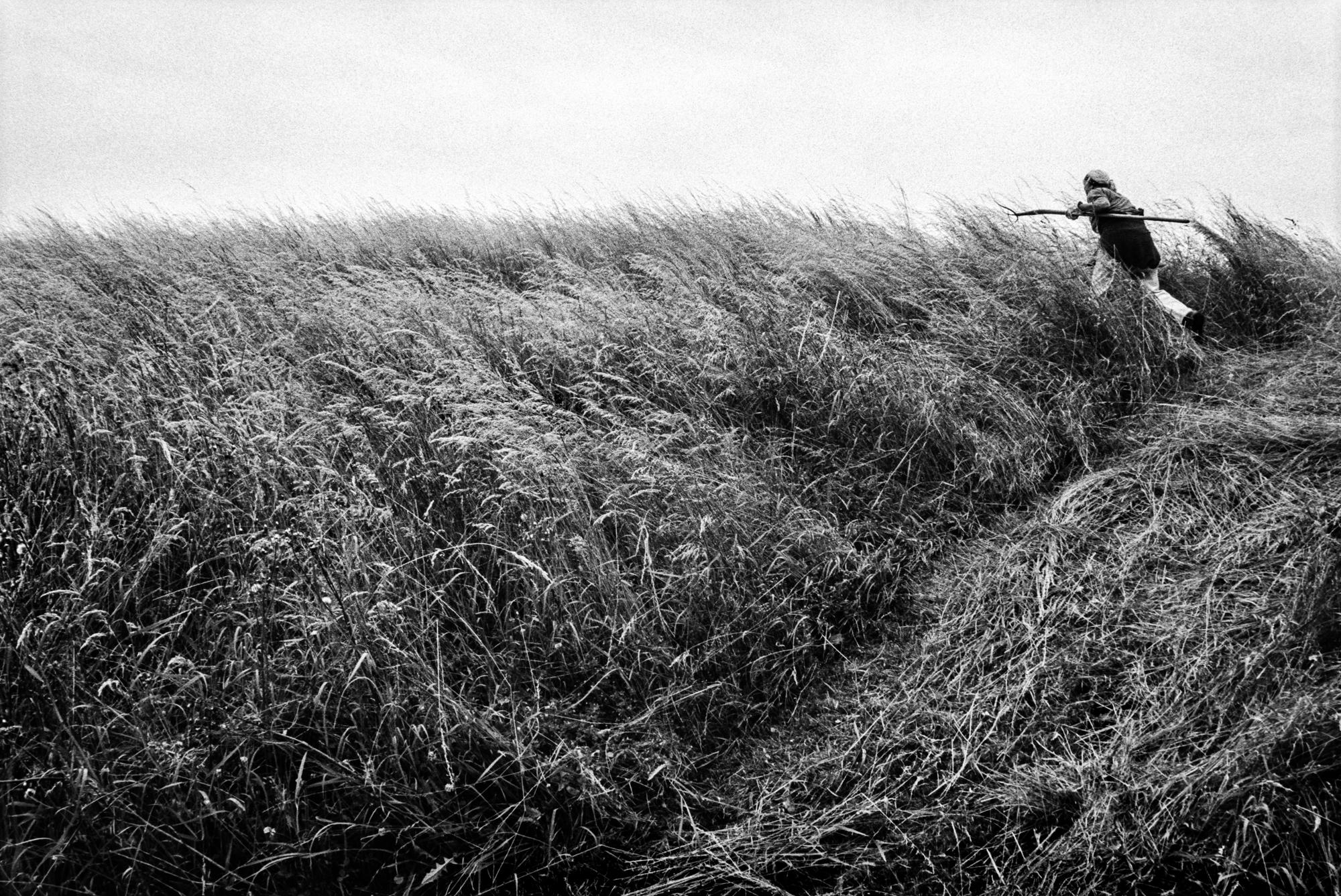 Photo Tomas Wuethrich, PPAF