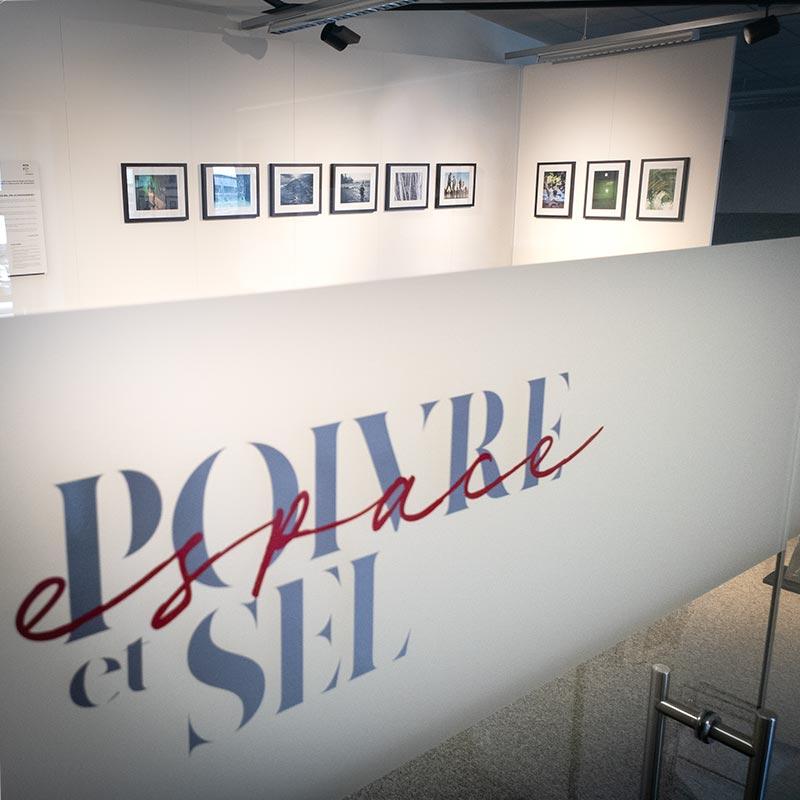 PPAF à la galerie Poivre et Sel